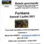 Balade gourmande à Forléans le 3 juillet 2021